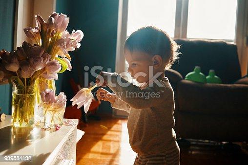 istock baby exploring the flowers 939584132