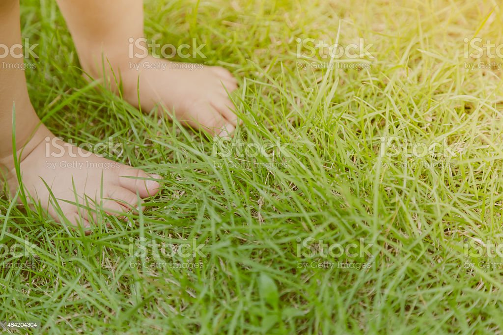Baby feet in grass stock photo