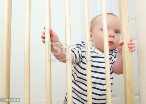 istock Baby Gate 175415106