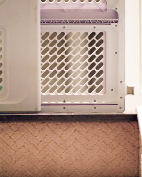 baby-tor-blick vom keller mit teppich treppen - hund unter treppe stock-fotos und bilder
