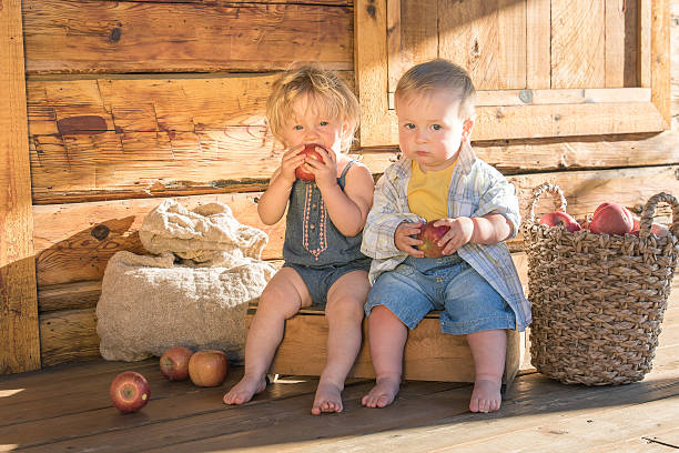 Baby girl and boy on a rustic farm stock photo