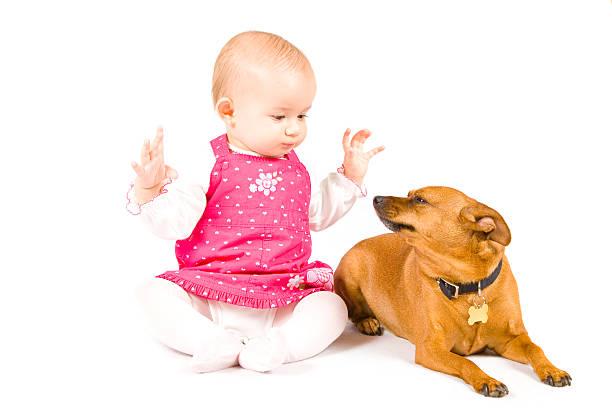 Baby girl and her dog picture id114385984?b=1&k=6&m=114385984&s=612x612&w=0&h=6jagyizeey8v sr 0wxe hwapukwlzhhy7kvbmovvsy=