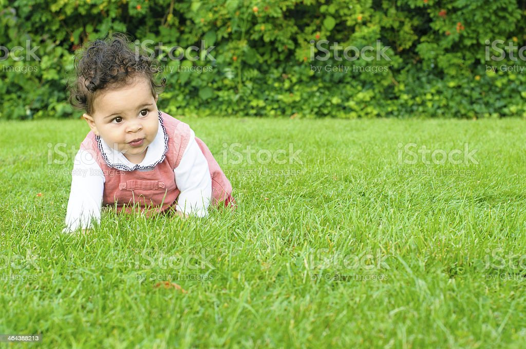 Baby Girl ( 8 Months old ) Crawling In Garden royalty-free stock photo