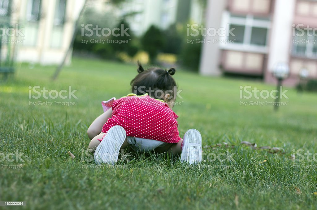 Baby Girl Crawling on Grass stock photo