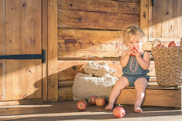 Baby girl Eating Apple in a Wooden Farm House stock photo