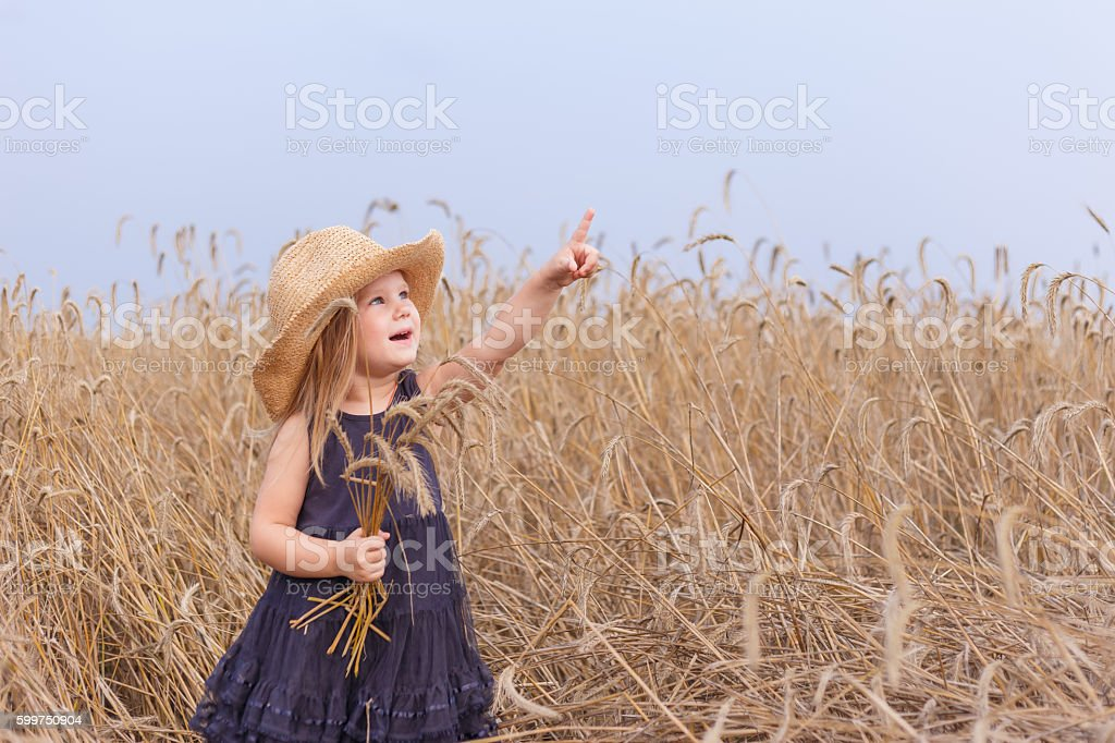 Baby girl in a big straw hat standing in  wheat stock photo