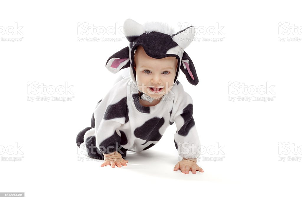 Baby girl in cow costume royalty-free stock photo