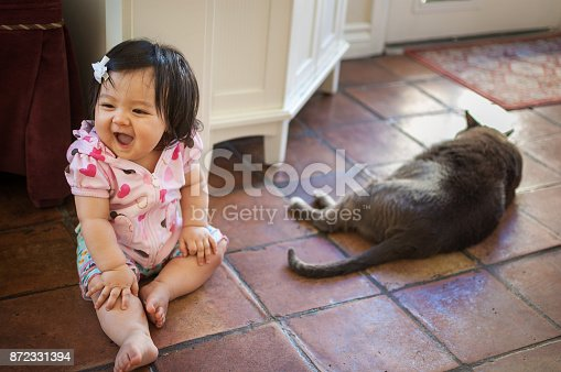 An 8 month old baby girl is sitting on the kitchen tile floor with her pet cat. She's laughing at something. She is Eurasian.