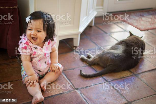 Baby girl laughing with pet cat picture id872331394?b=1&k=6&m=872331394&s=612x612&h=eqbxw95eiep k98a1ryp ky3uy6zyhje0gf2cnzygji=