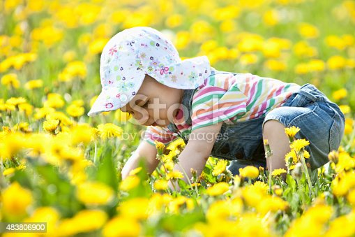 istock Baby girl looking down and crawling in flower field 483806900