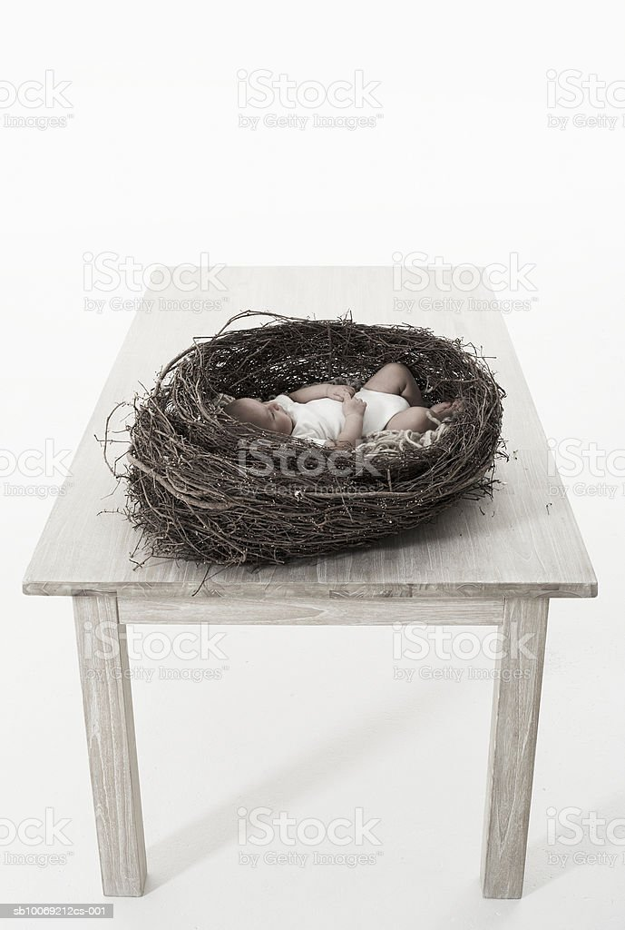 Baby girl (2-5 months) lying in birds nest on table, studio shot royalty-free stock photo