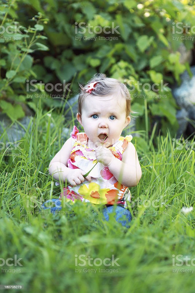 Baby Girl Sitting in Grass royalty-free stock photo