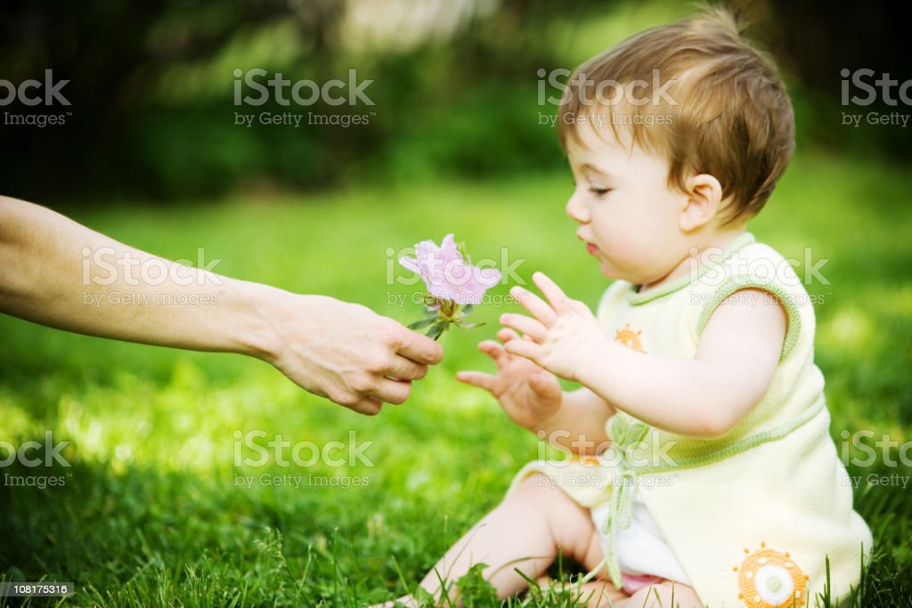 Baby Girl Sitting Outside and Being Presented with Pink Flower royalty-free stock photo