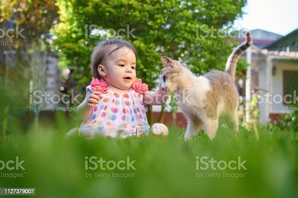 Baby girl touching cat picture id1127379007?b=1&k=6&m=1127379007&s=612x612&h=frf8le5idlowa hmxrfyl6ty axjdof9unwm0klwzne=