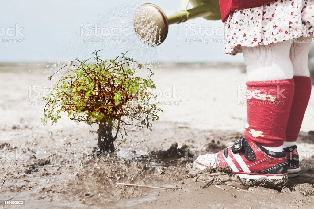 baby girl watering plant in desert stock photo