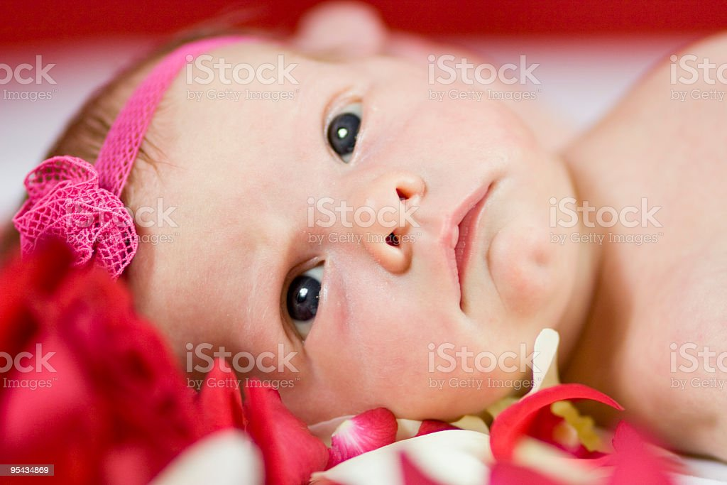 Baby girl with red roses royalty-free stock photo