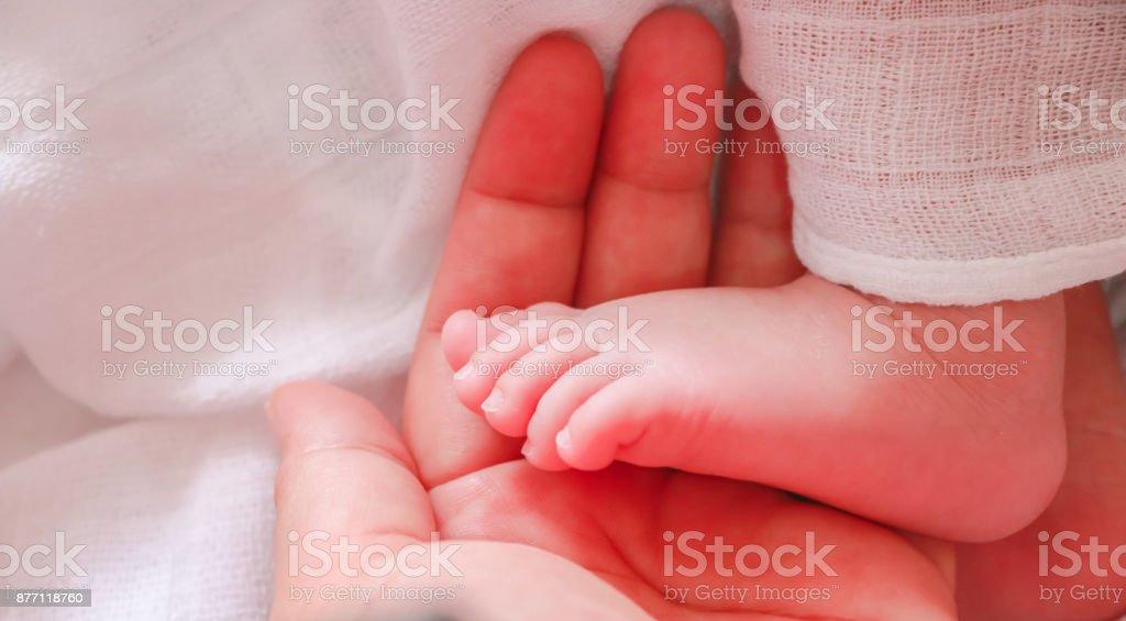 Baby Hand in Mamas hand – Foto