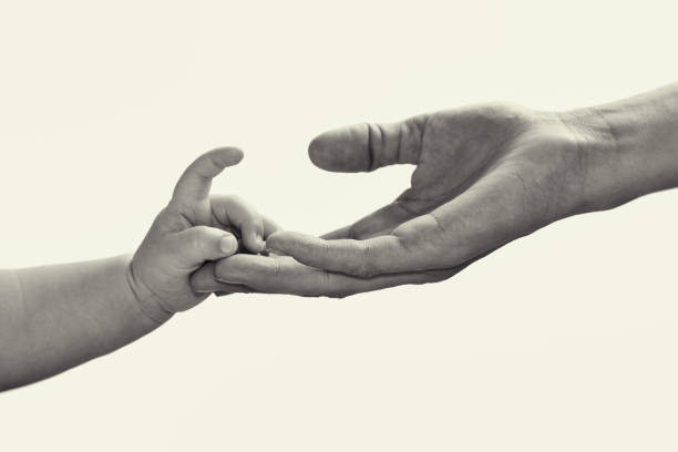 Baby hand in mother's hand. stock photo