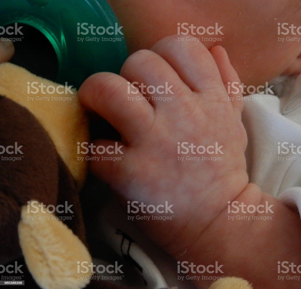 Baby hand royalty-free stock photo