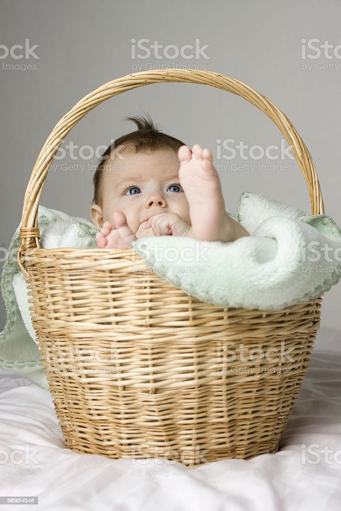 Baby in basket royalty-free stock photo