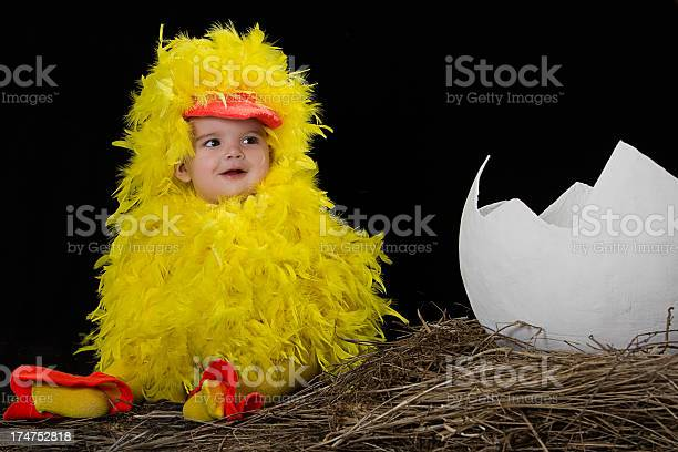 Baby in little chicken costume picture id174752818?b=1&k=6&m=174752818&s=612x612&h=4yx6xcl6rtxyjrm7m9saqmvmvqk5luwbymaw3mn5nma=