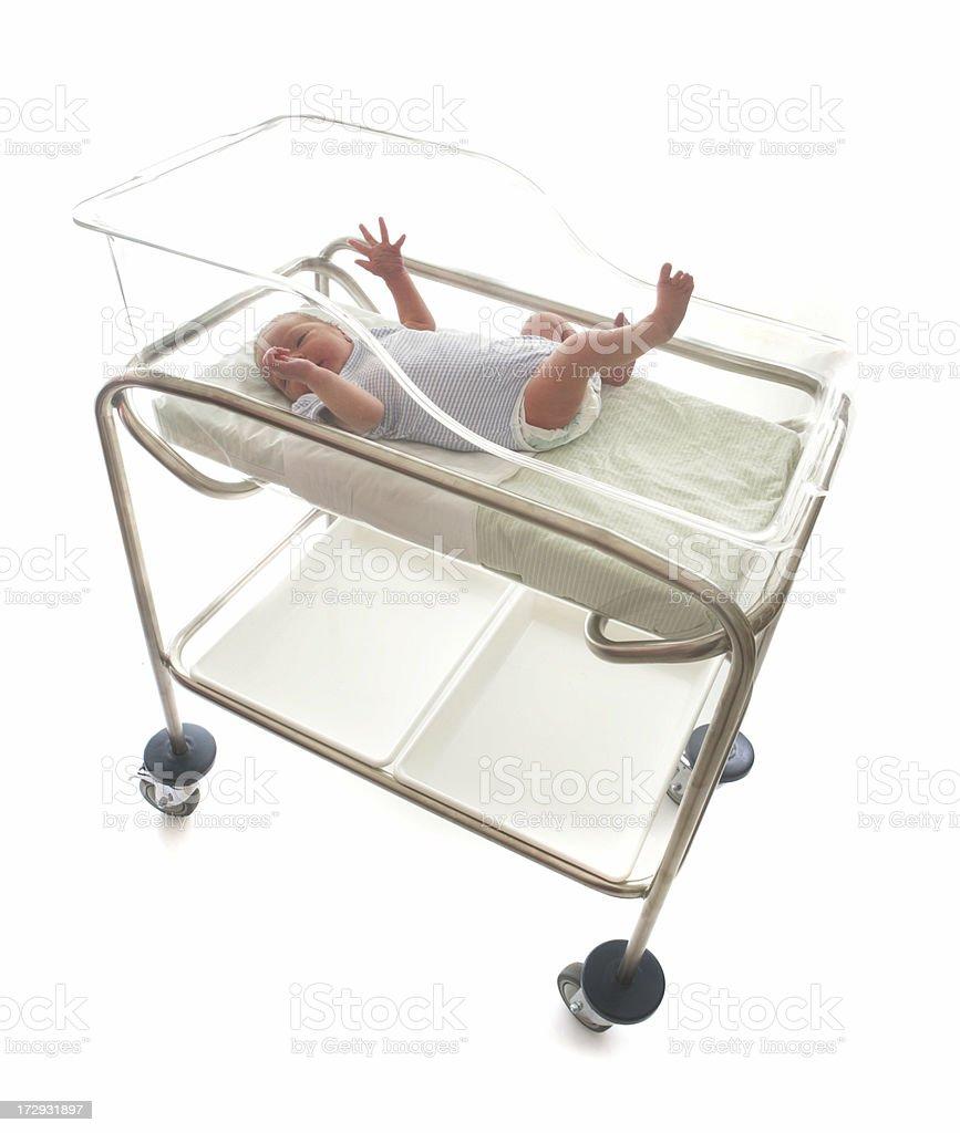 Baby in Maternity Crib royalty-free stock photo