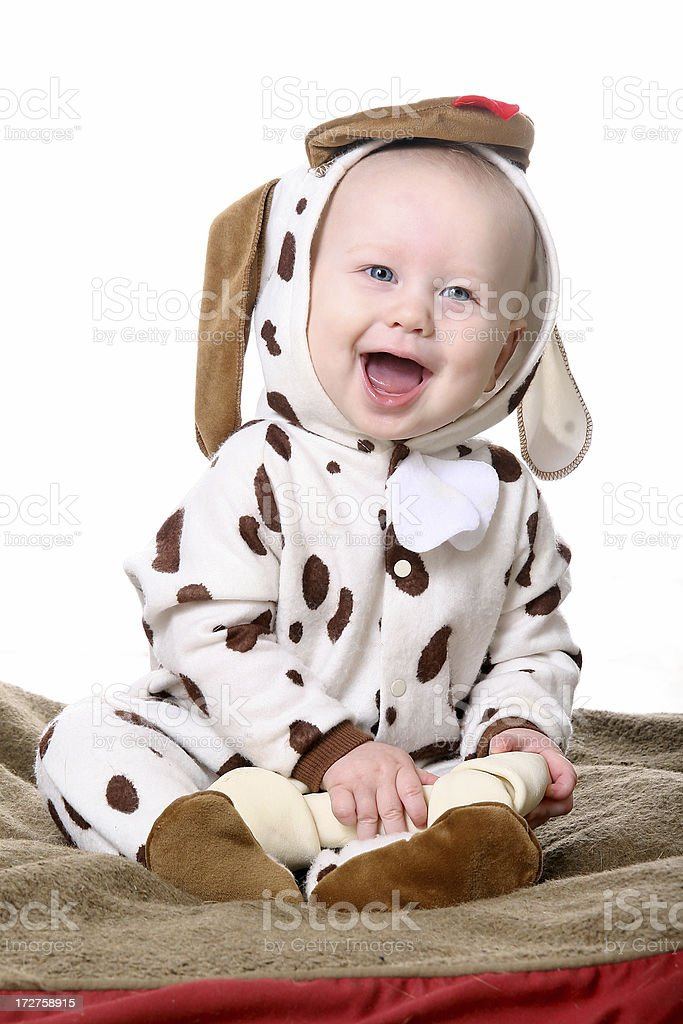 Baby in Puppy Dog Costume royalty-free stock photo
