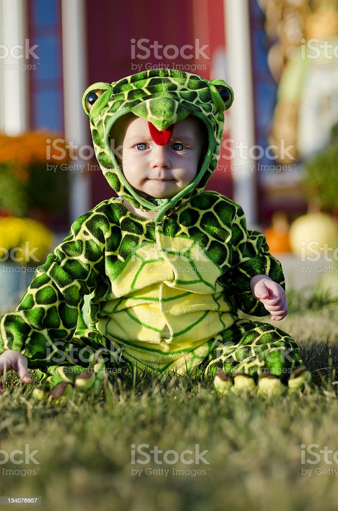 Baby in Turtle Costume stock photo