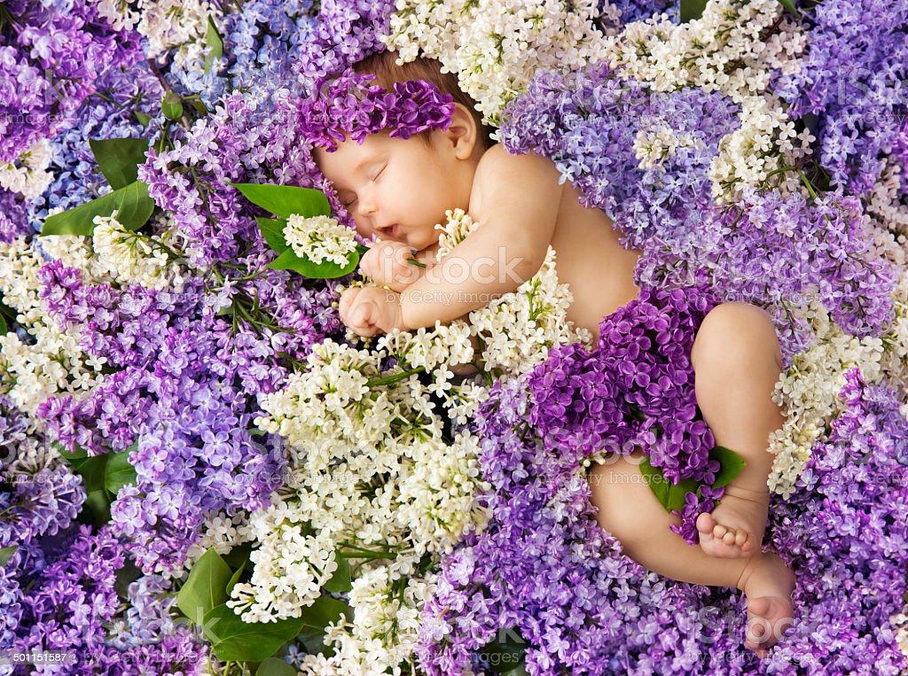 baby lilac flowers, small girl sleeping, newborn child greeting card stock photo