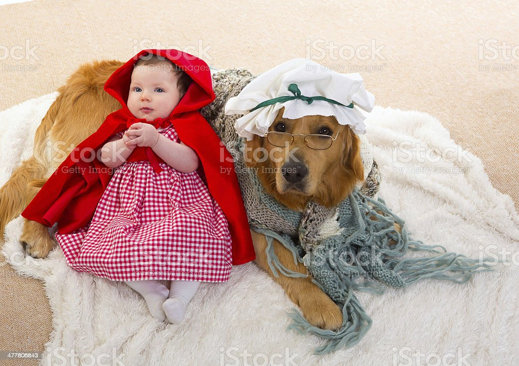 per tutta la famiglia più vicino a vasta selezione di Baby Little Red Riding Hood With Wolf Dog As Grandma Stock Photo ...
