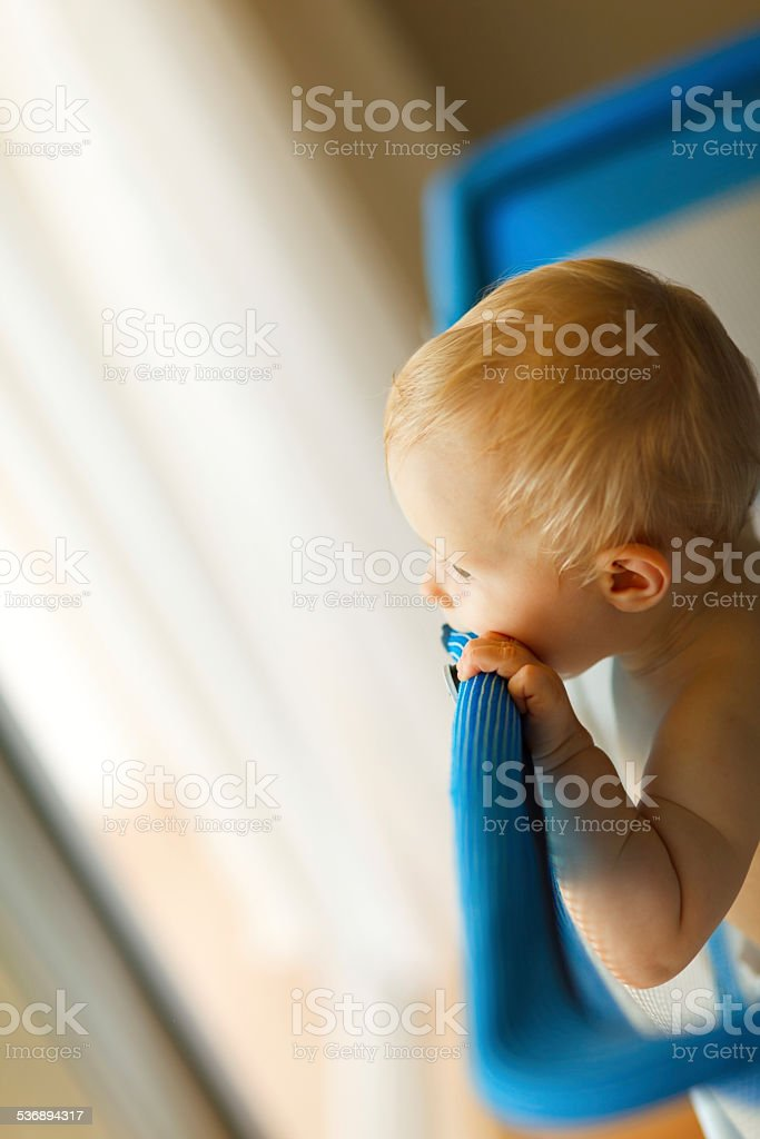 Baby looking from playpen stock photo