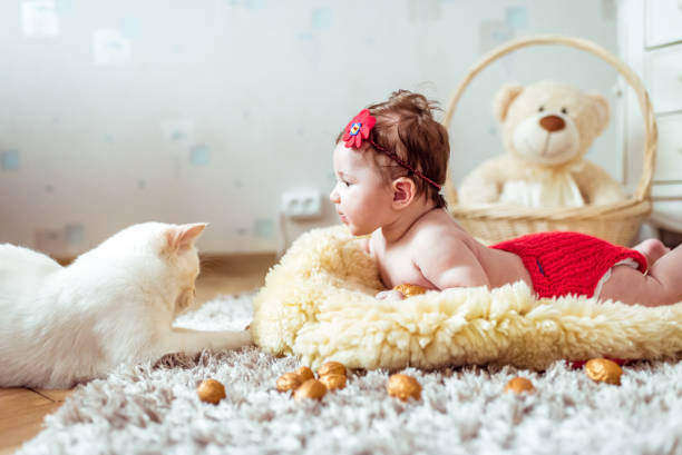 Best Naked Cat Girl Stock Photos, Pictures & Royalty-Free