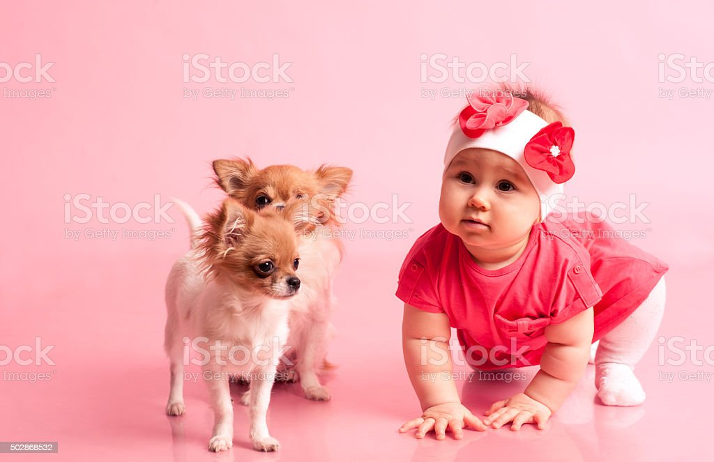Baby playing with puppies stock photo