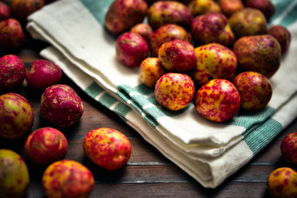 Baby Potatoes (Ullucus Tuberosus). stock photo
