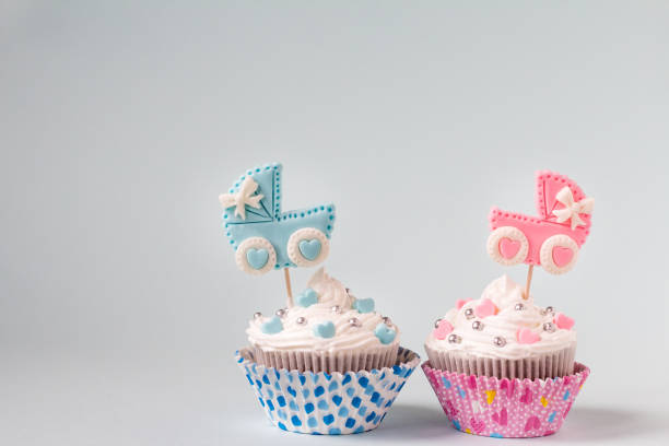 baby shower cupcake for a girl and a boy. twins newborn announcement. text space - its a girl stock photos and pictures