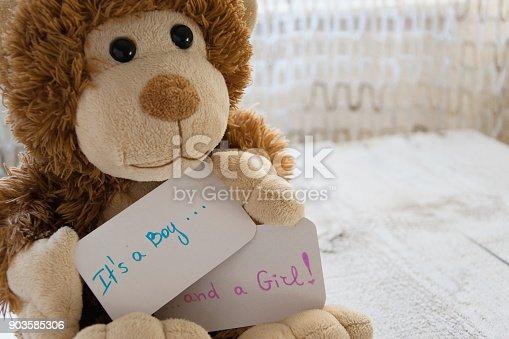 591421282 istock photo Baby shower