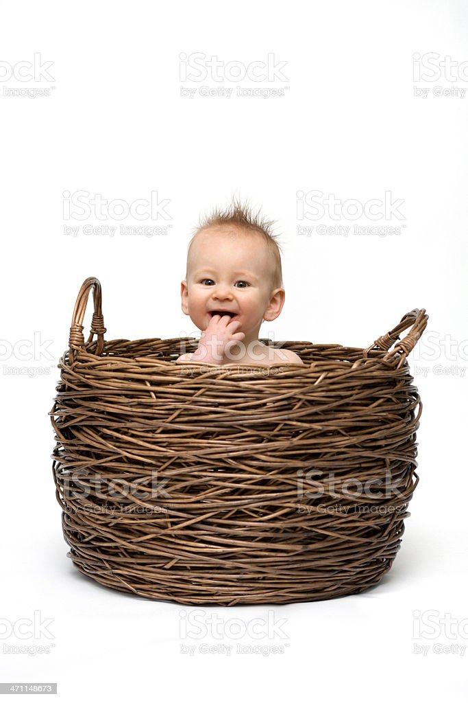 Baby sits in Basket - white background royalty-free stock photo