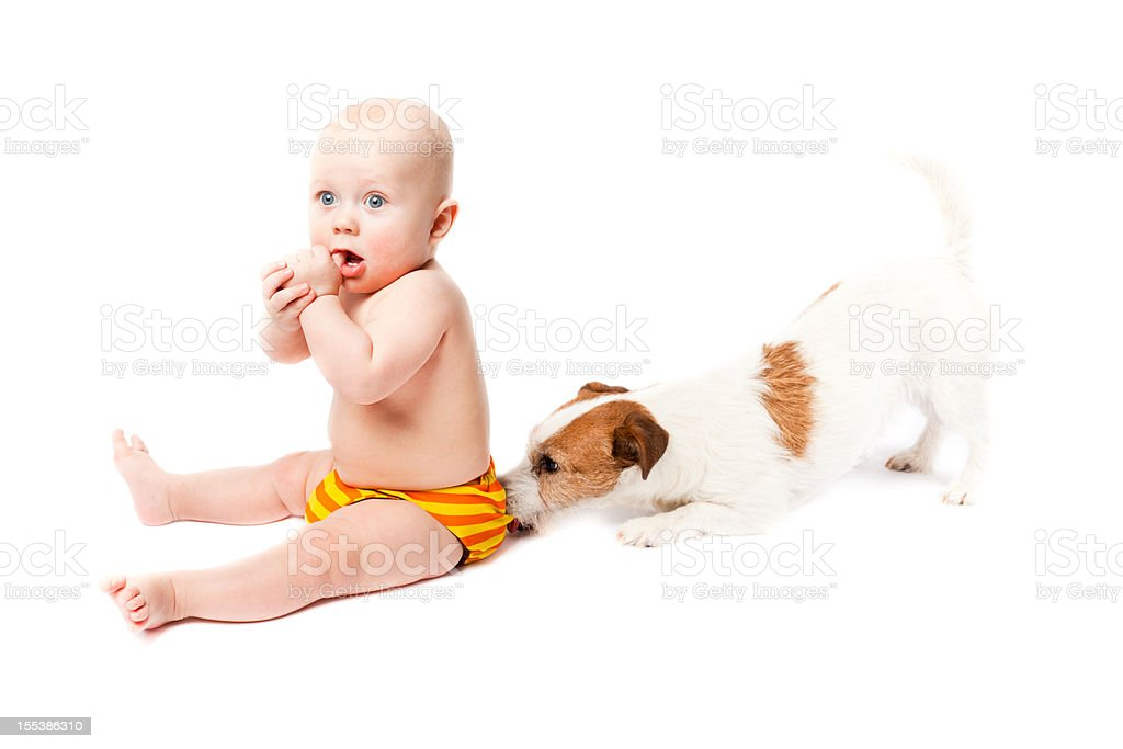 Baby sitting with durable diaper and suprised by small dog royalty-free stock photo