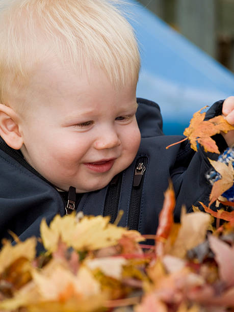 Baby smiling in a pile of leaves stock photo