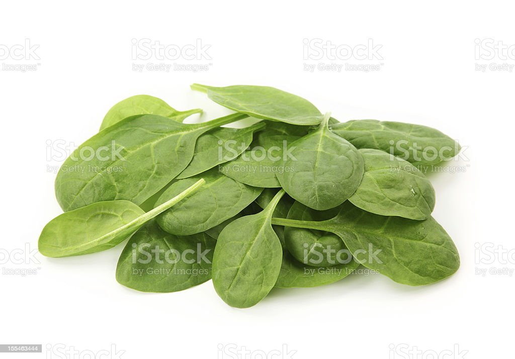 Baby spinach leaves royalty-free stock photo