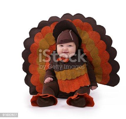 istock baby turkey 91632827