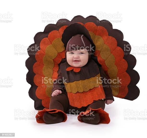 Baby turkey picture id91632827?b=1&k=6&m=91632827&s=612x612&h=olso3eeryykkxt0rpgqt7hn9qjl84s btlofkyqzmwu=