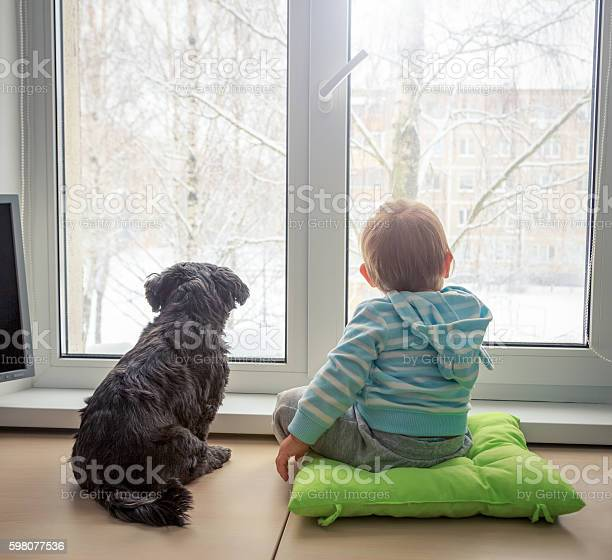 Baby with dog looking through a window in winter picture id598077536?b=1&k=6&m=598077536&s=612x612&h=1ogjsq 0cazxnpv6fvm35ghmv0srkjqyfmndkufmxsg=