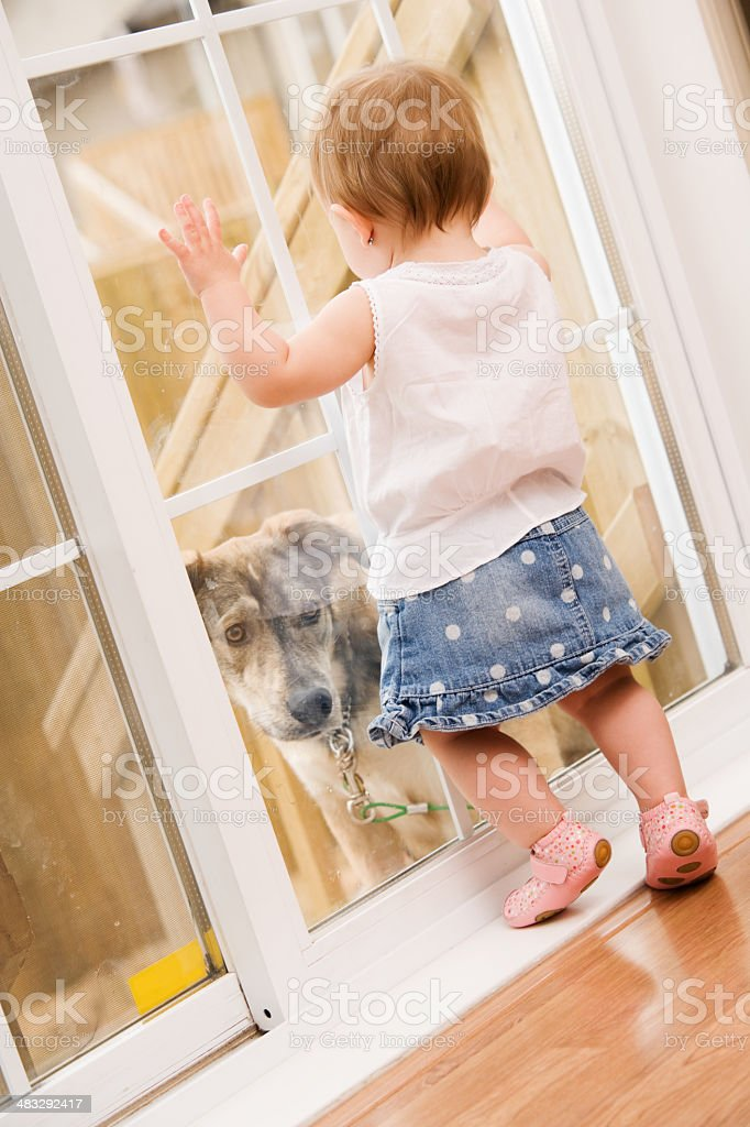 Baby with Dog Outside royalty-free stock photo