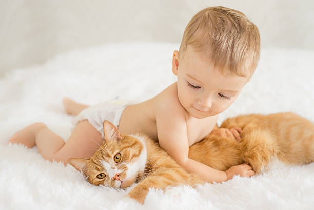 baby with his cat - young nudist boys stock photos and pictures