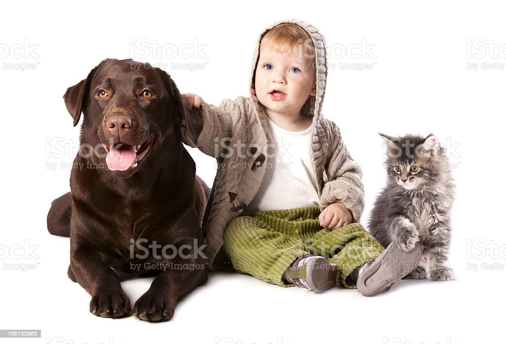 baby with his pets royalty-free stock photo