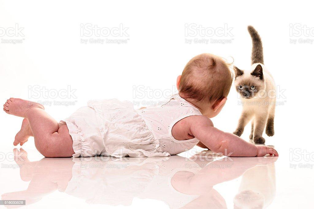 Baby with kitten stock photo
