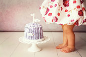 A cropped image of a baby girl standing beside her first birthday cake. Shot with a Canon 5D Mark II. Some copy space.