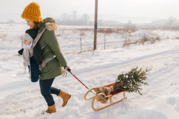 der erste weihnachtsbaum des babys - baby born schlitten stock-fotos und bilder