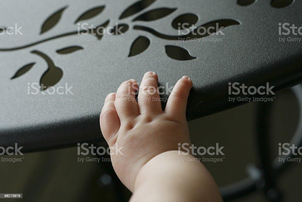 baby's hand royalty-free stock photo